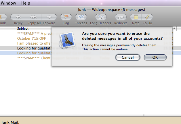 Picture of Leopard erase deleted messages dialogue box