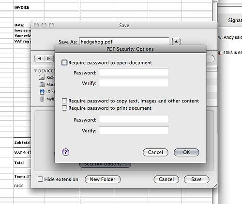 PDF security options